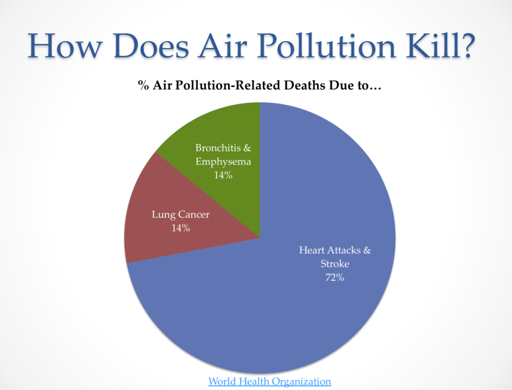 Air pollution kills through heart disease not lung cancer