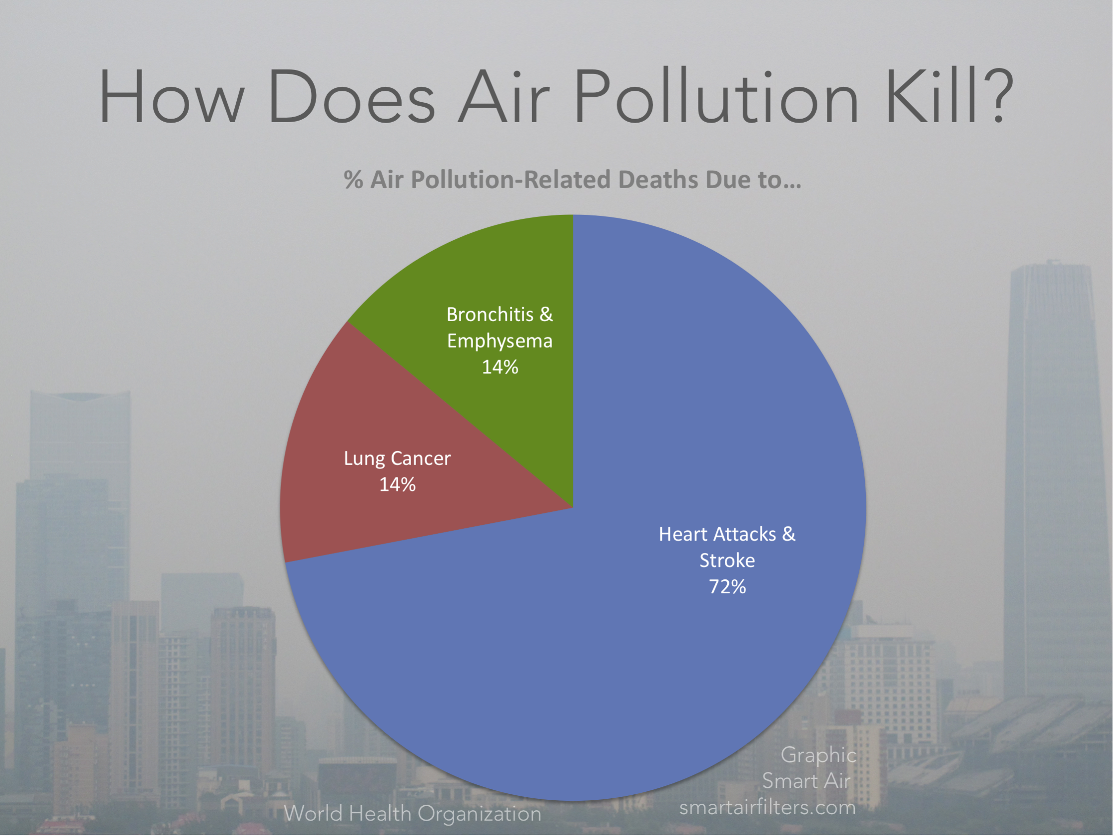 Air Pollution Death Causes WHO Heart Attack Lung Cancer