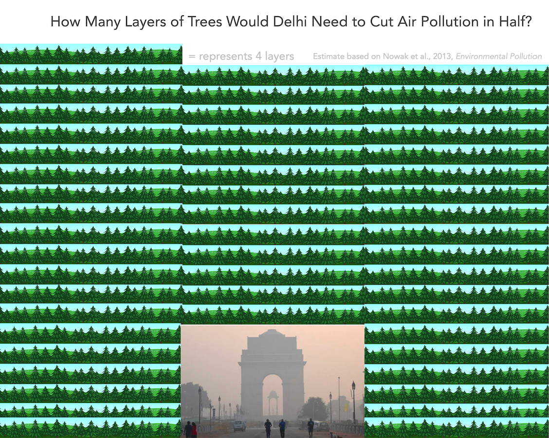 Number of trees to plant to filter out half of Delhi PM2.5 air pollution