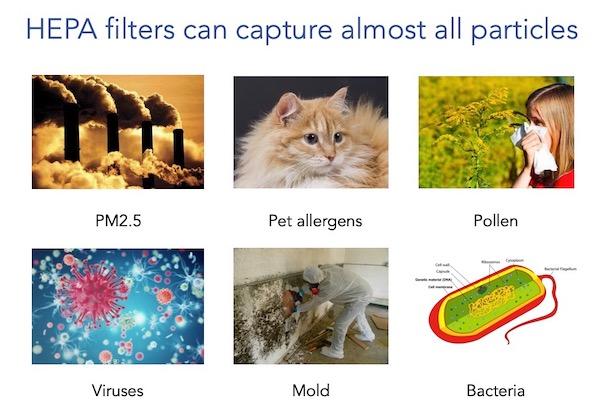 HEPA filters capture allergen pollen bacteria PM25 mold virus