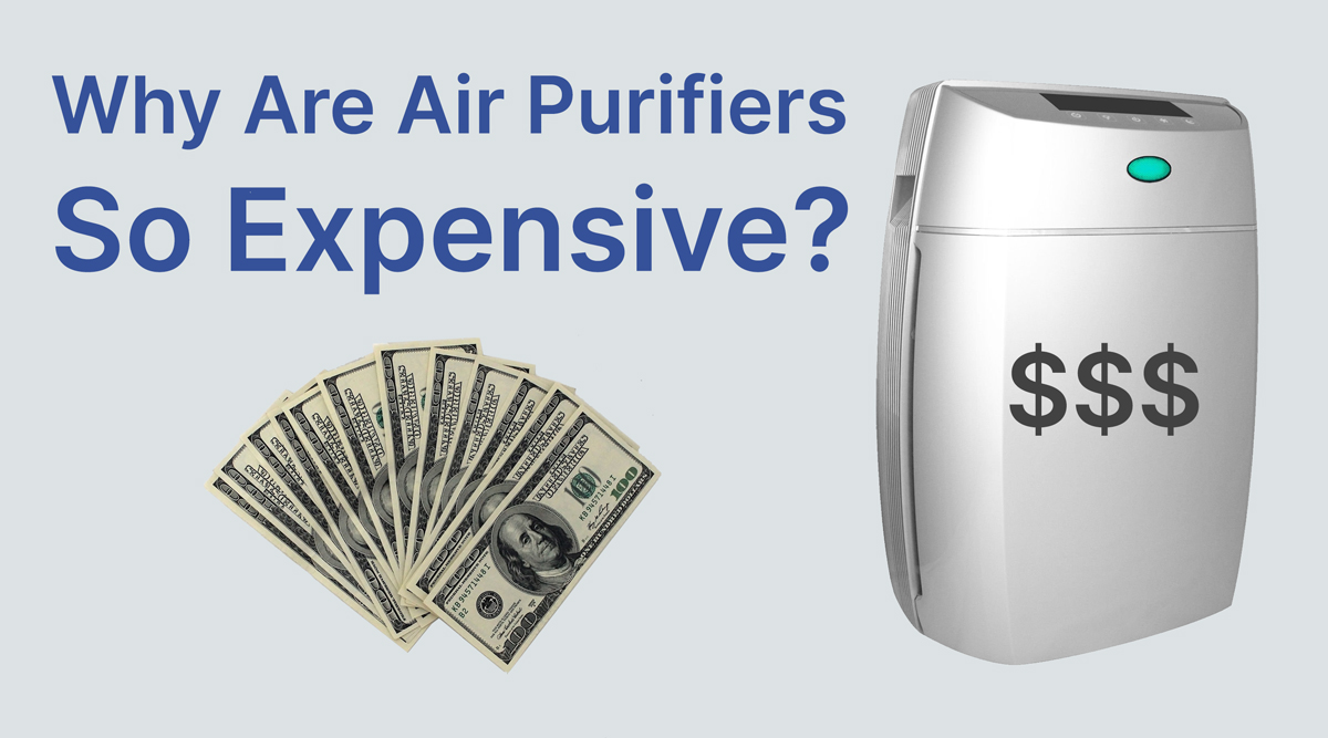Why are air purifiers so expensive