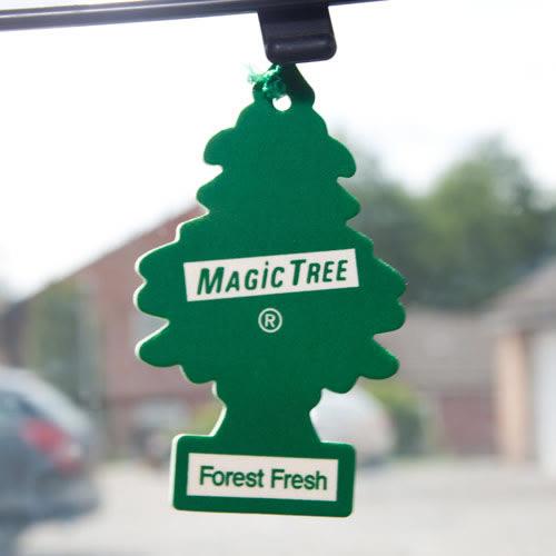 Pine Tree Air Freshener VOCs