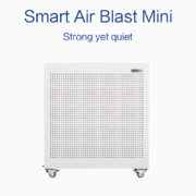 Smart Air Blast Mini purifier