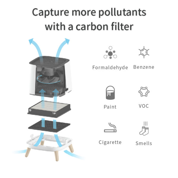 pollutants capture with carbon filter